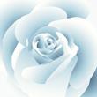 Amar es dejar de vivir para uno mismo, es sumergirse en el infinito y no ver nunca los límites a los sentimientos, es consagrarse a un ser de tal manera que sólo se viva y se piense para hacerle feliz; es conseguir que todas las pasiones humanas, temor, esperanza, dolor, alegría, placer, no dependan más que de un solo objeto.